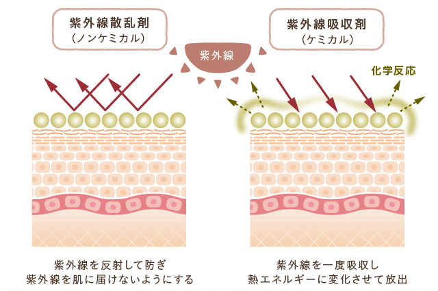 ケミカルとノンケミカルの各紫外線に対する反応