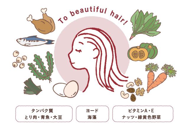 美しい髪の毛を作る為にはタンパク質・ヨード・ビタミンA・Eが効果的
