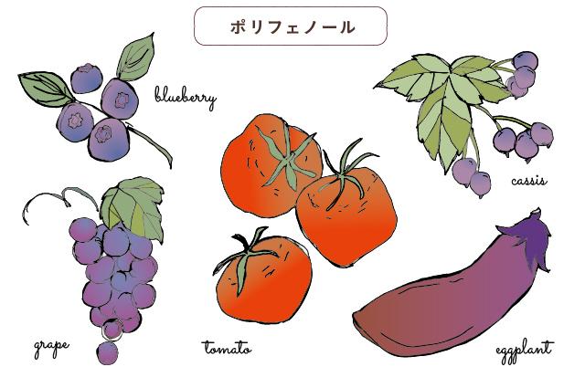 ポリフェノールやカロテノイド豊富な食材:ブルーベリー・ぶどう・トマト・カシス・ナス